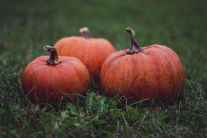 october half term halloween activities surrey